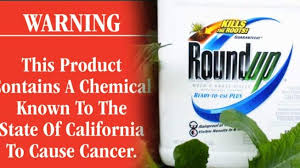 Roundup caused his cancer