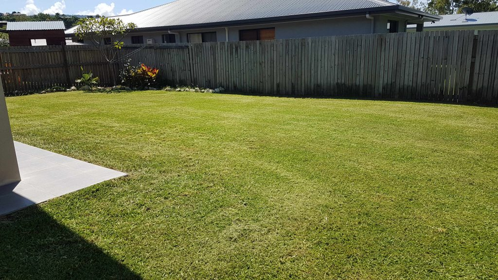 Stay Green Lawn Care - Cannonvale (18)