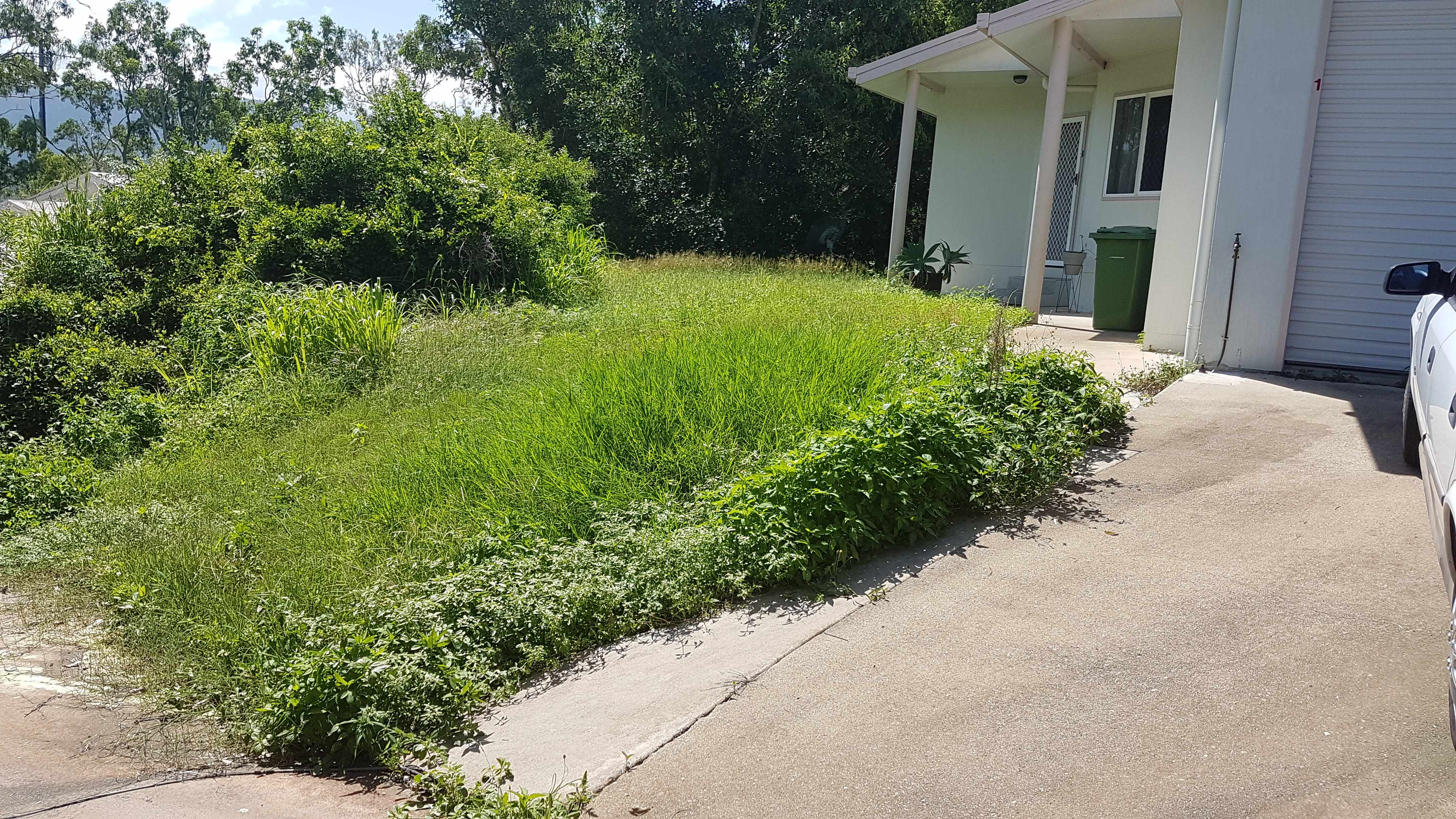 Stay Green Lawn Care - Gardening (17)